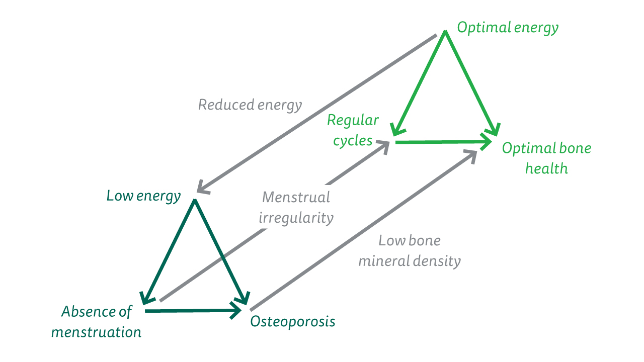 The diagram explains the impact of the female athlete triad.