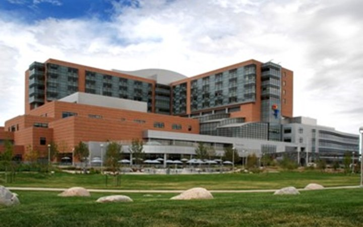 Outside view of the new Children's Hospital building, which has brown brick and blue-green windows and a gray brick entrance. The balloon boy is prominent on the front of the building and it's surrounded by green grass and trees.