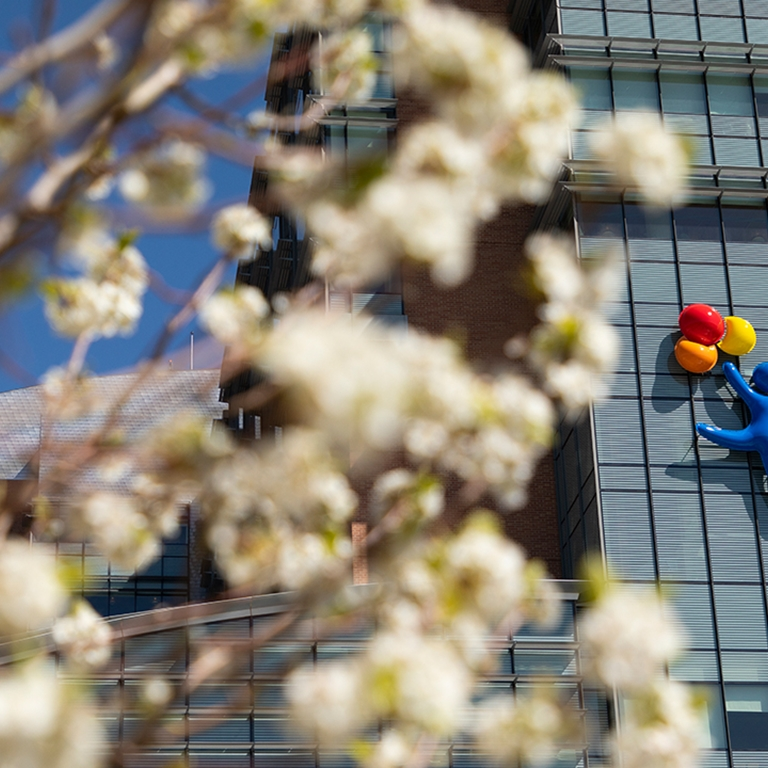 View of Children's Hospital Colorado, Anschutz Medical Campus through spring blossoms