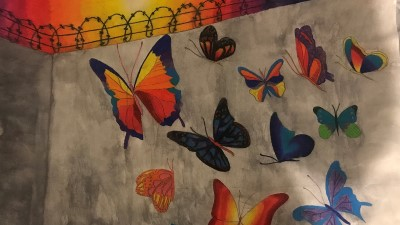 The cover of the book shows colorful butterflies on the inside of a cement wall with barbed wire on top.