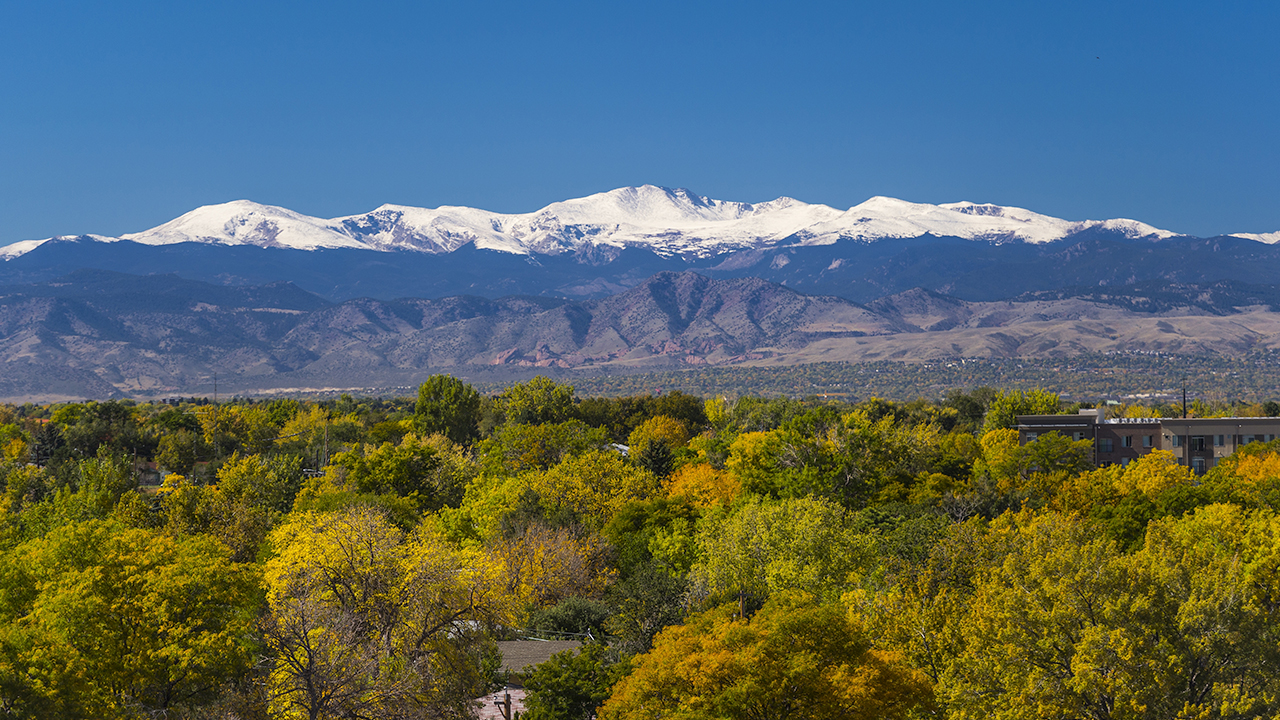 A beauty shot of snow-capped mountains with green and yellow trees in the valley.