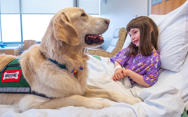 Medical dogs can convince upset kids to take their meds or hold still for procedures, and they help scared kids feel safe.