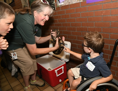 A kid in a blue shirt with brown hair sits in a wheelchair at the Colorado Fetal Care Center Reunion at Denver Zoo. He is touching a snake with his index finger.
